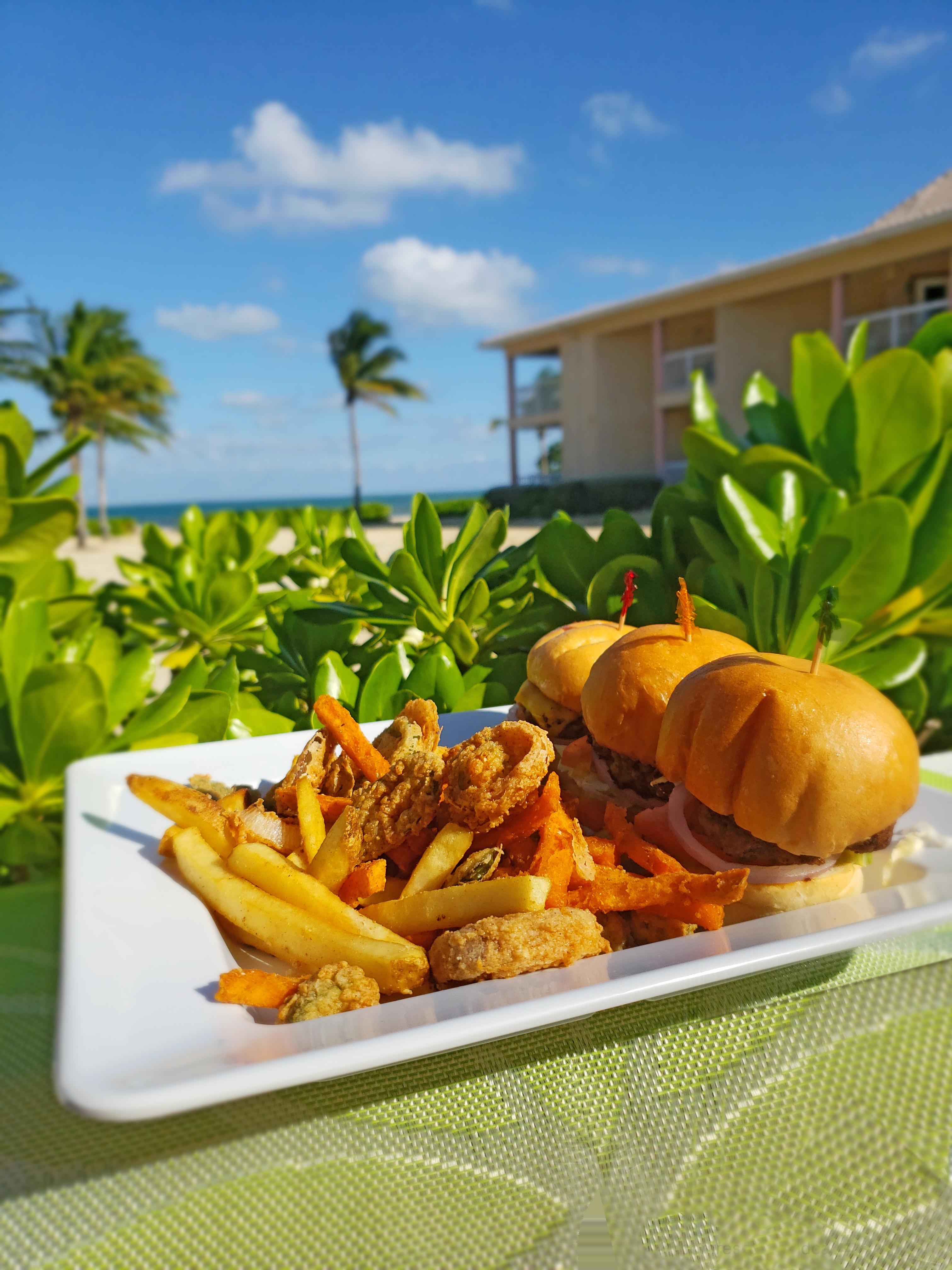 Blue Iguana Cayman Fries and Slider