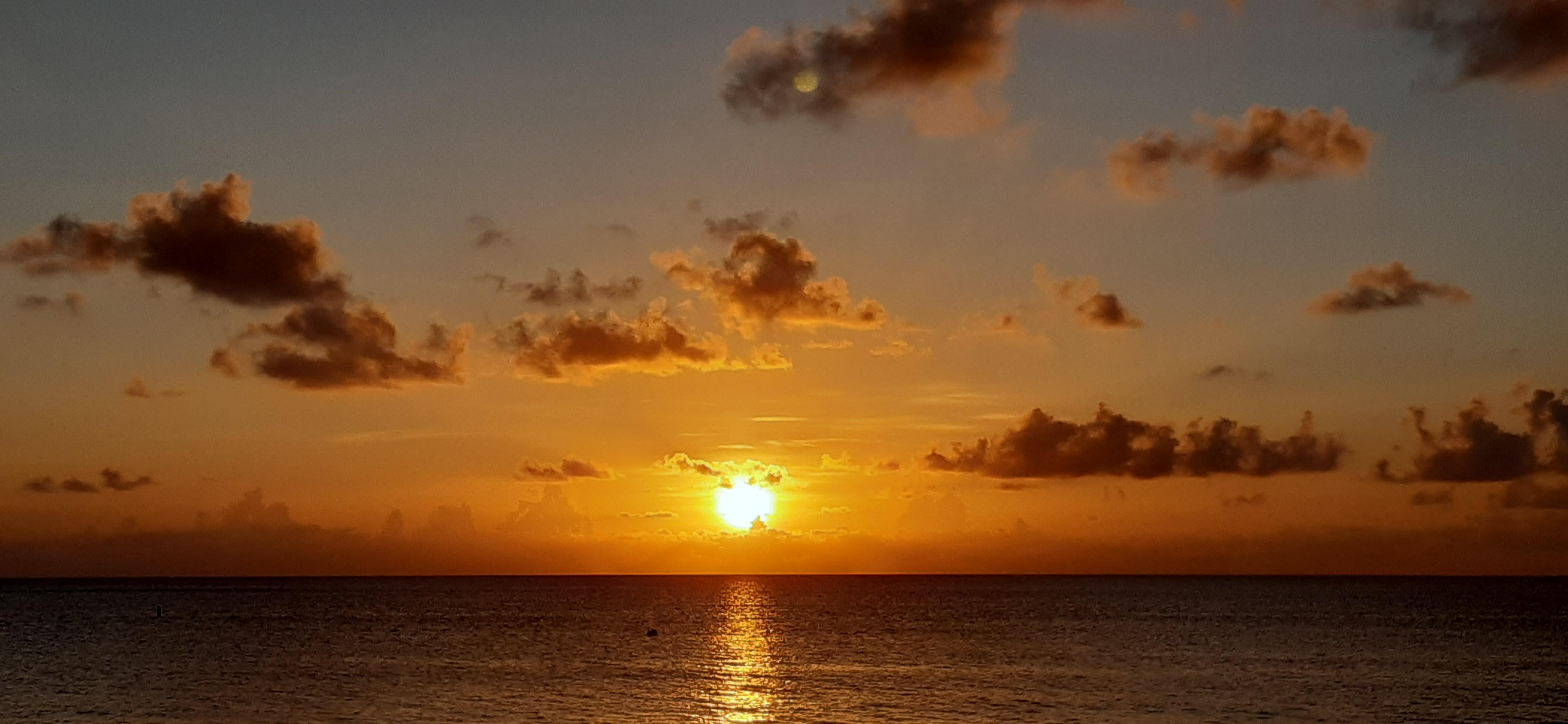 Sharkeez Cayman Sunset View