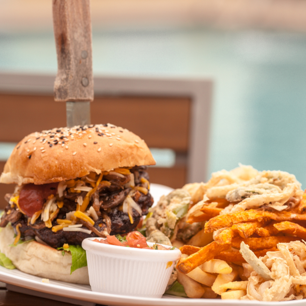 Sunshine Grill Burger and Fries
